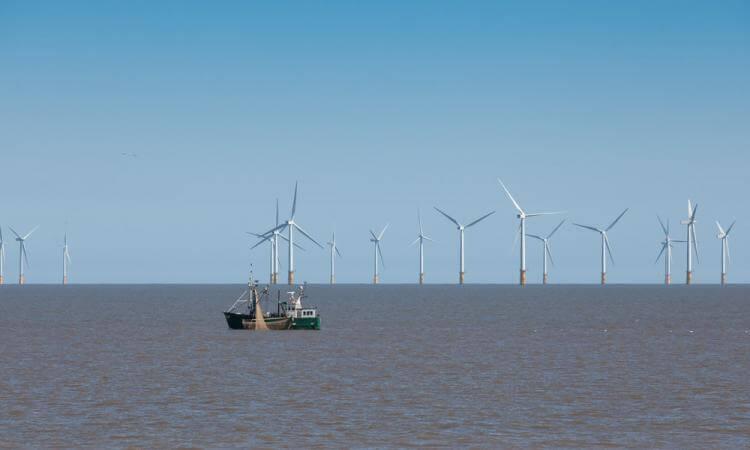 België produceert steeds meer windenergie