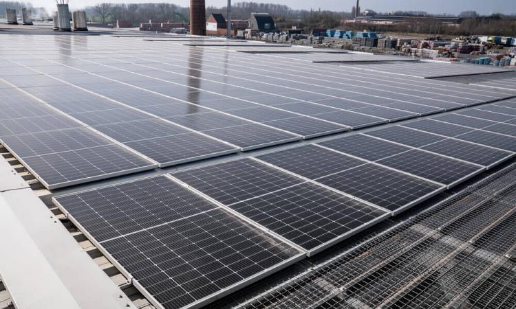 """Eneco: """"Wij zijn grootste Belgische producent van zonne-energie"""""""