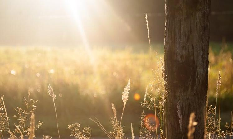 Verlicht het zonnige lenteweer onze energiefactuur?